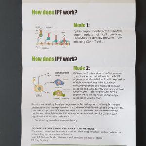 Enzoimmune Active Oral Spray Mechanism of Action
